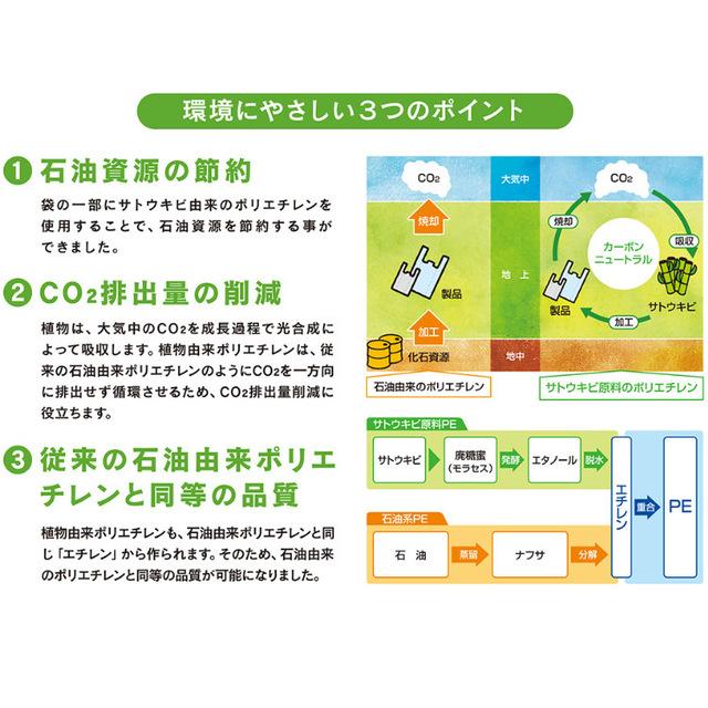 reji-bio25-a.jpg